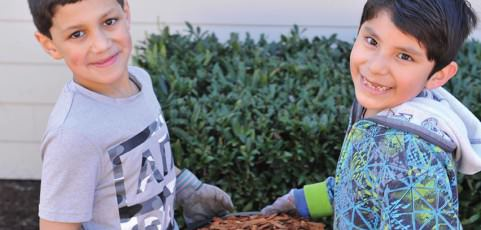 Students help build school garden
