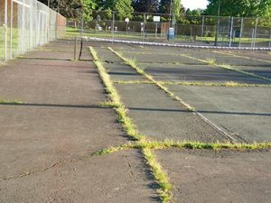 Worn-out tennis courts at Argay Park will be refurbished this summer. STAFF/2017