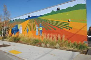 Parkrose's agricultural roots are the subject of a recently completed mural on the side of the new Grocery Outlet building, 10721 N.E. Sandy Blvd. Historic Parkrose paid half the $14,000 cost. STAFF/2017